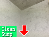 壁天井カビ